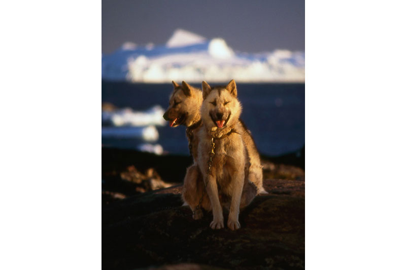 Groenland_08